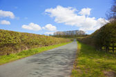 English country road — Stock Photo