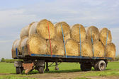 Round bales on a trailer — ストック写真