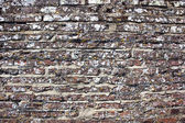 Background texture old brick wall with lichen — Stock Photo