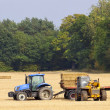 Stock Photo: Collecting straw bales
