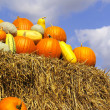 Pumpkins on bales of straw (hay) — Stock Photo #2938746