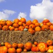 Pumpkins on bales of straw (hay) — Stock Photo #2938848