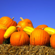 Pumpkins on bales of straw (hay) — Stock Photo #2938981