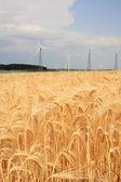 Wind turbines — Foto Stock