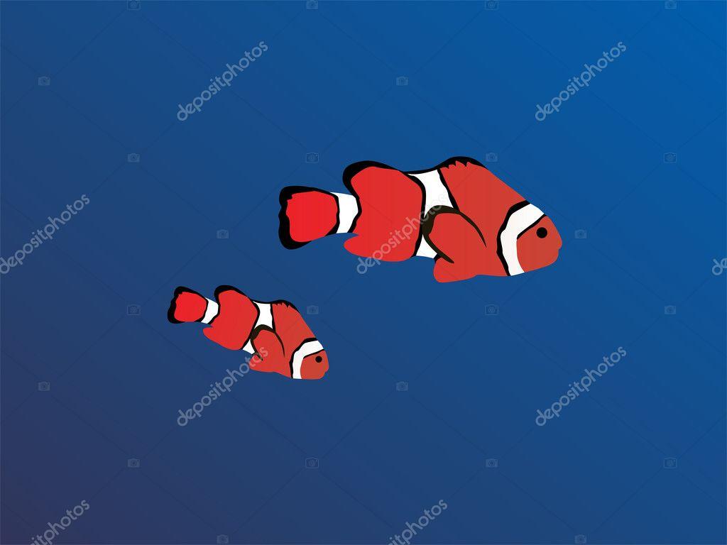 Clown fish stock vector ramonakaulitzki 2870850 for Clown fish price