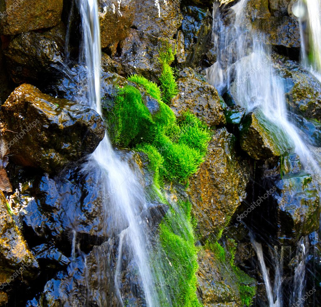 Stream against stones or green moss — Stock Photo #3180318