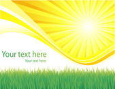 Green grass and sun spring background — Stock Vector
