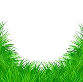 草矢量图案背景 — 图库矢量图片