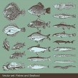 Fish vector set background — Stock Vector #3615251