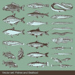 Royalty-Free Stock Vectorafbeeldingen: Fish vector set background