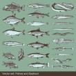 Fish vector set background - Stock Vector
