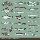 Fish vector set background — Stock Vector