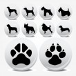 Collection of animal foot prints vector icons — Stock Vector #3626127