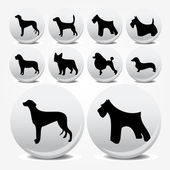 Dogs collection vector icons — Stock Vector
