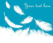 羽毛矢量背景 — 图库矢量图片