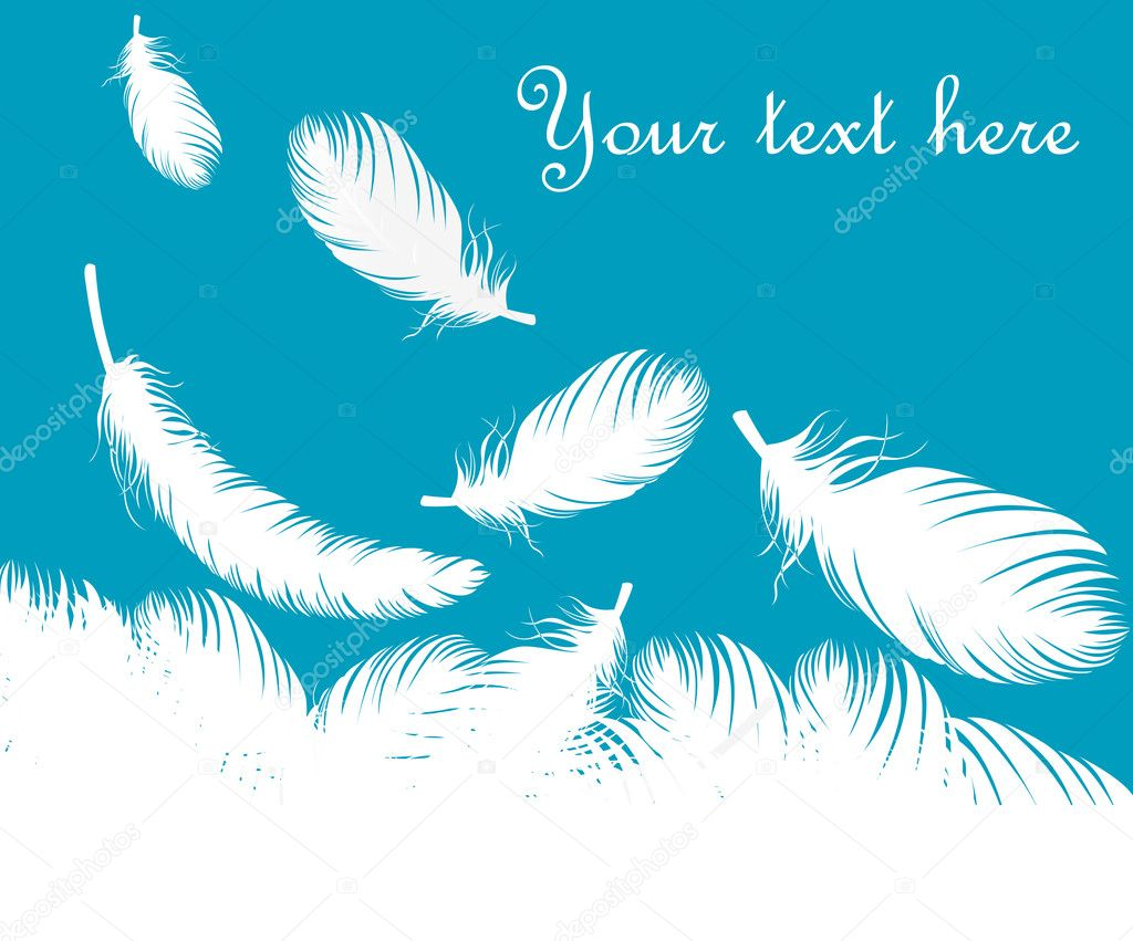 Feathers vector background for poster or card — Stock Vector #3629975
