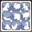 Royalty-Free Stock Vektorfiler: Farm animals vector icon button set