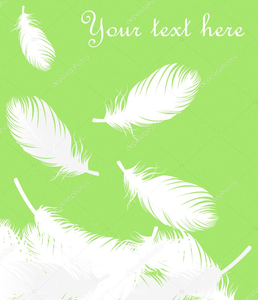 Displaying 18> Images For - Falling Feathers Background...