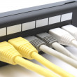 Patch panel - Stock Photo
