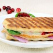Stock Photo: Healthy turkey panini