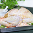 Royalty-Free Stock Photo: Raw turkey, dressed