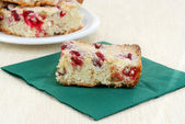 Cranberry Nut Bar Cookie — Stock Photo