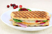 Healthy turkey panini — Stock Photo