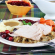 Turkey dinner — Stock Photo #2807818
