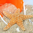 Starfish on beach with pail - Stock Photo