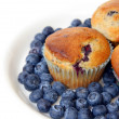 Blueberry Muffins and Fresh Blueberries — Stock Photo