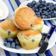 Blueberry Muffins with Fresh Blueberries — Zdjęcie stockowe