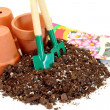 Clay pots, seeds, soil and garden tools. — Stock Photo