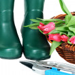 Garden Boots. Basket and Tulips — Stock Photo #2823348
