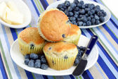 Muffin mirtillo con mirtilli freschi — Foto Stock