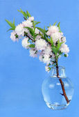 Flowering Almond in Vase — Stock Photo