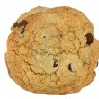 Chocolate Chip Cookie Macro - Stock Photo
