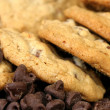 Chocolate Chip Cookie Macro - Zdjcie stockowe