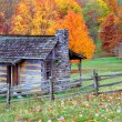 Stock Photo: Log cabins in autumn