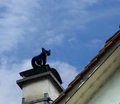 Sculpture of a black cat on the roof — Stock Photo