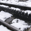 A cog railway, pens and rails railway, rack-and-pinion railway — Stock Photo