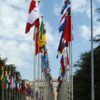 United Nations Geneva — Stock Photo