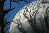 Sphere and shadow of a tree. — Stock Photo