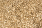 Wood chips. — Stock Photo