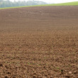 Stock Photo: Arable.