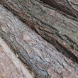 Stock Photo: Rough logs.