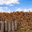 Stock Photo: Firewood and block.