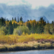 Changing Seasons in the Tetons — Stock Photo