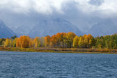 Teton Vista — Stock Photo