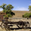 Stock Photo: Buckboard in desert