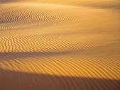 Líneas en la arena — Foto de Stock